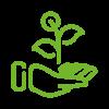 009 plant vert clair